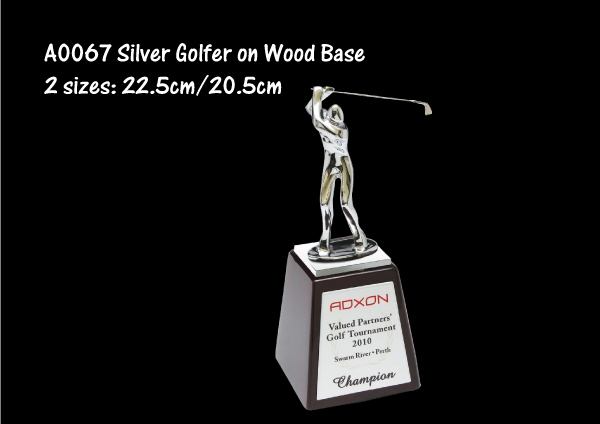 Silver Golfer on Woo..